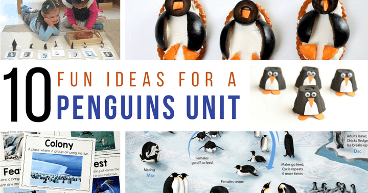 Use this set of amazing blog posts to create a penguin unit this winter for your kids