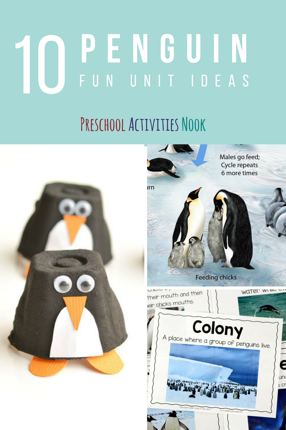 They are also fascinating animals to study. Use this set of amazing blog posts to create a penguin unit this winter for your kids.
