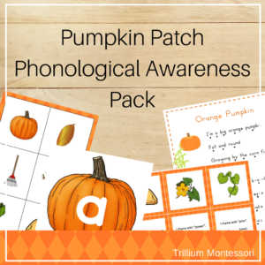 Pumpkin patch phonemic awareness