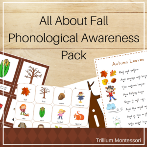 All About Fall phonemic awareness for preschool and kindergarten