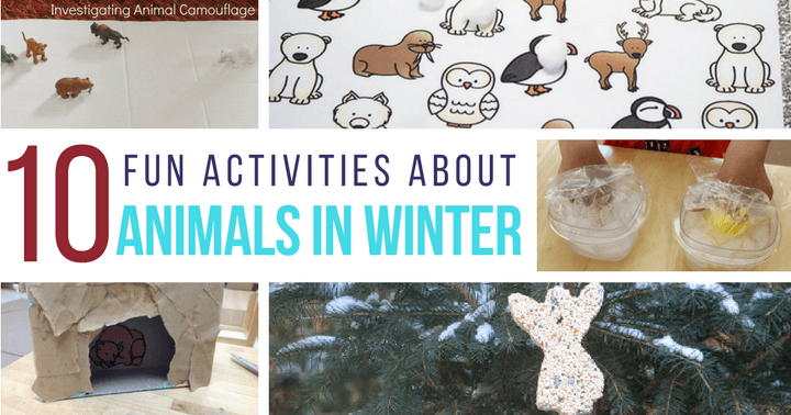 Preschoolers will enjoy these learning activities about animals in winter