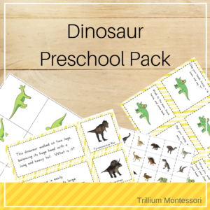 Dinosaur Preschool Pack
