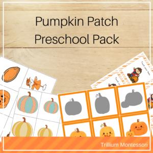 Pumpkin theme preschool activities
