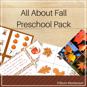 All About Fall preschool activities